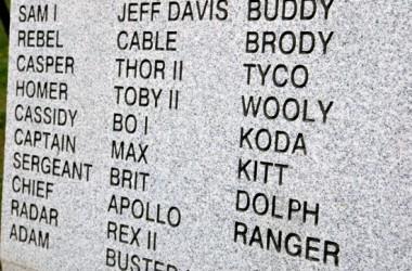 K-9 memorial-06