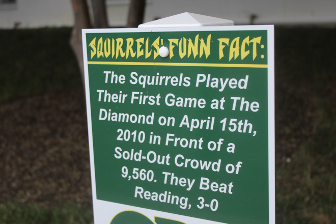 Flying Squirrels game-02