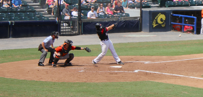 Flying Squirrels game-10