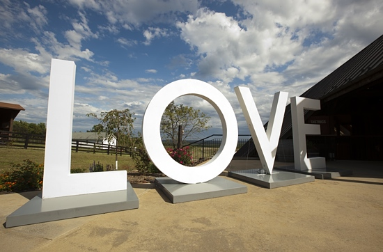 LOVE Comes to Blenheim Vineyards