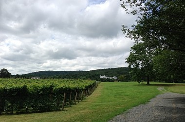 WineTrip2