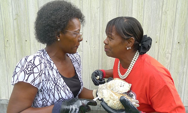 Deborah and Clementine oyster