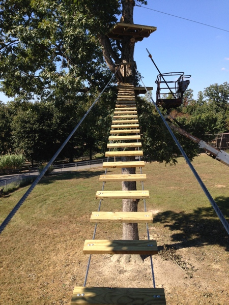 Richmond Zoo Set To Open Zip Line Obstacle Course