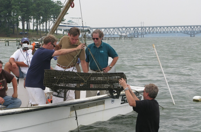 Mark Warner at the Croxton oyster farm (Travis is in the bottom right).