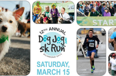 Dog-Jog-race-page-banner-2014