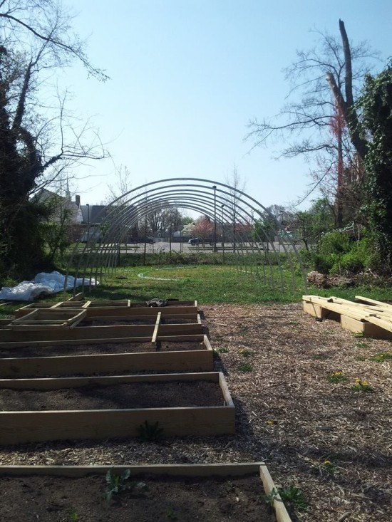 swansboro_community_garden_after