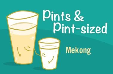 PaPs-Mekong