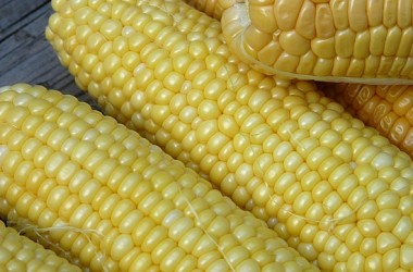 5ThingsForFamilies-2014.07.16-Corn