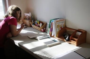 Homeschooling-2014.08.14