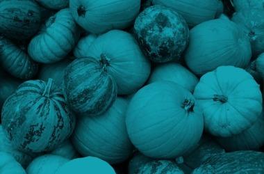 TealPumpkins
