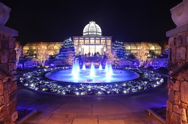 Lewis Ginter lights holidays