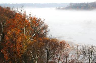fog_on_the_river