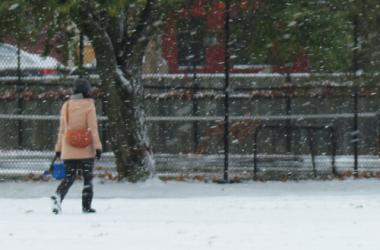 Abner Clay Park Snow