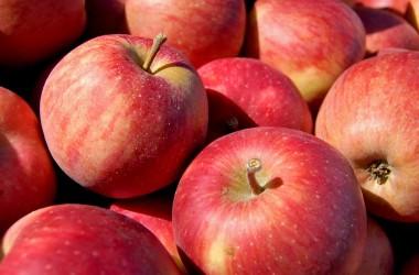Apples--2015.02.25