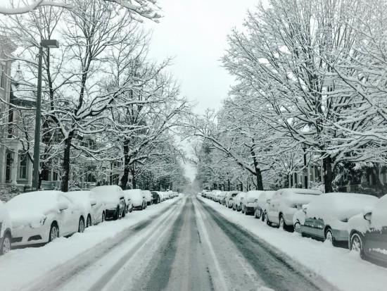 snow_fan