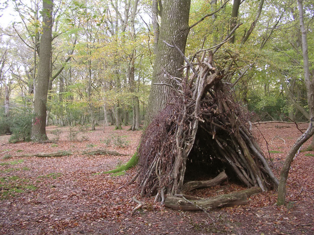 Temporary_wooden_shelter_on_Lyndhurst_Hill,_New_Forest_-_geograph.org.uk_-_81283