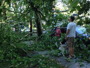 storm_damage