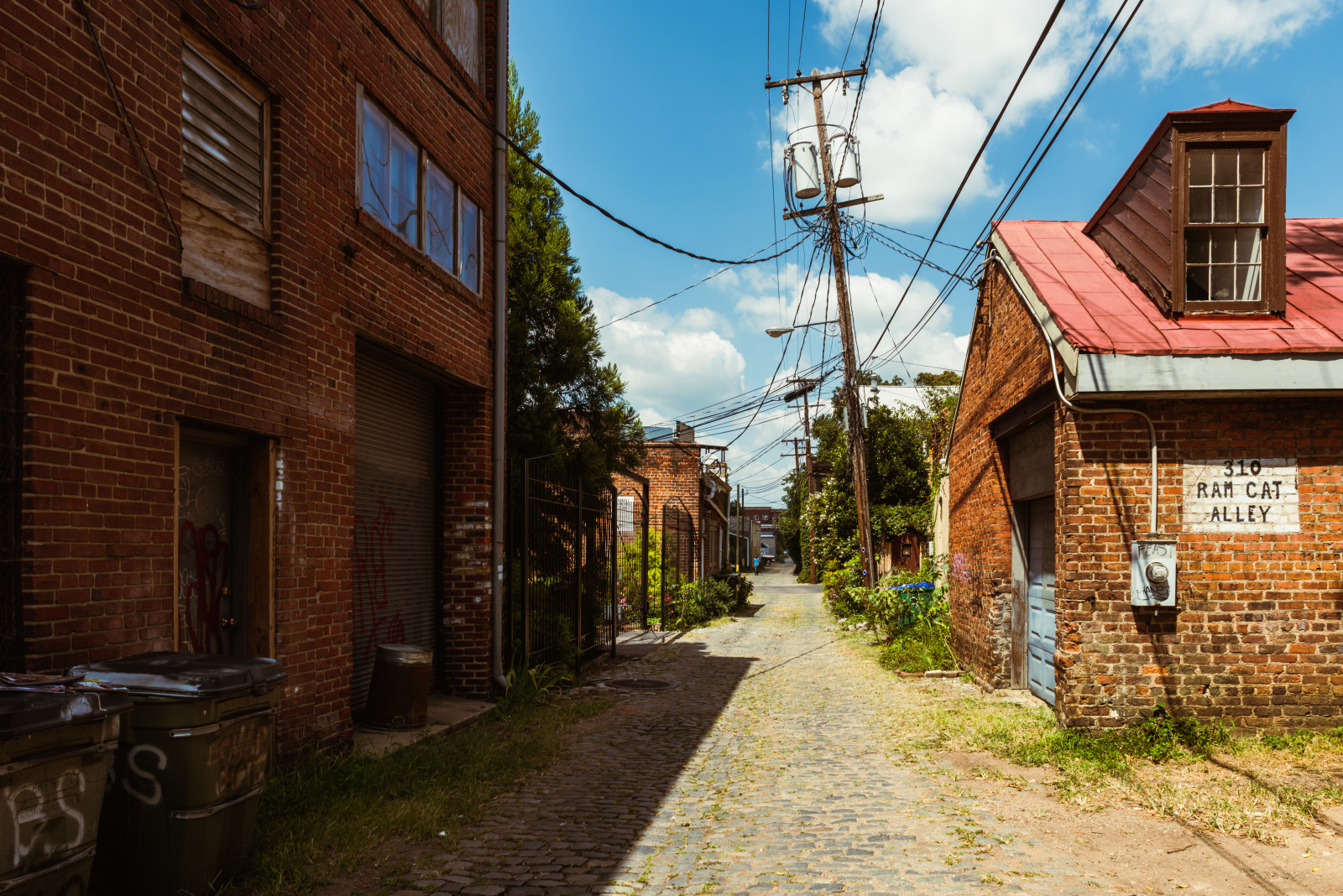 310 Ram Cat Alley